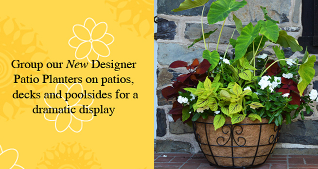 New Iron Patio Planters