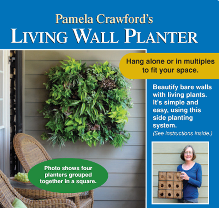 Pamela Crawford's New Living Walls