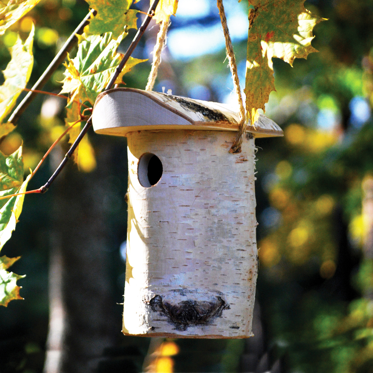 CS/3 - SMALL BIRD NEST BOX