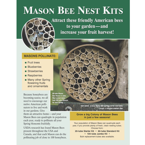 Mason Bee Point of Purchase Display Card