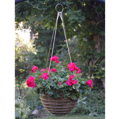 Cs/2 - 24 Stainless Steel Basket w/ Coco Liner and Stainless Hanger
