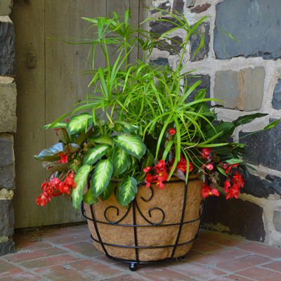 CS/5 - 17 Patio Planter w/Liner