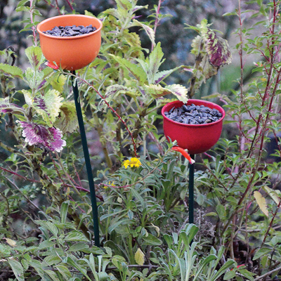 Cs/5 - Colorful Tulip Bird Feeder - Orange