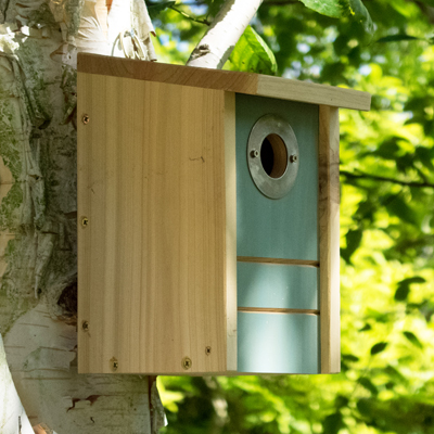 Cs/3 - BirdFEEDER or BirdHOUSE with removable front panel