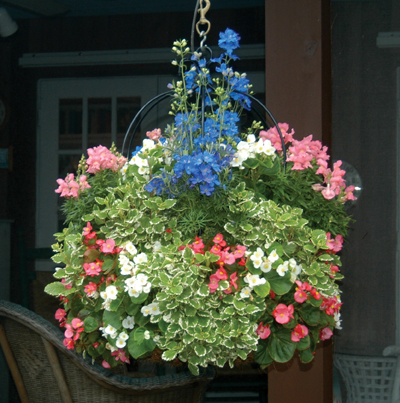 Imperial Hanging Planters