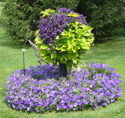 Side Planting Containers